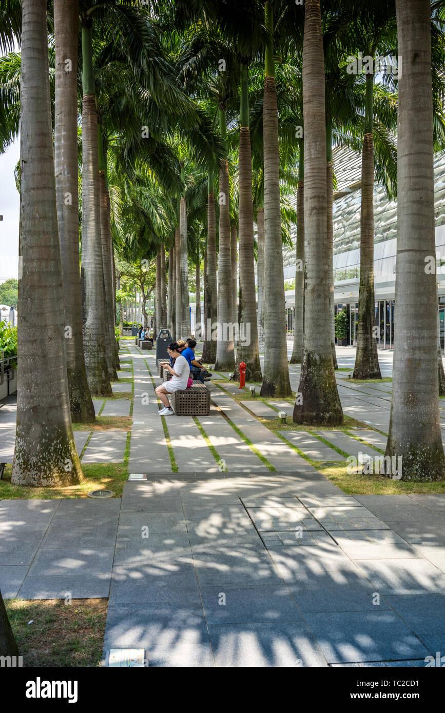 Il Marina Bay a Singapore Foto Stock