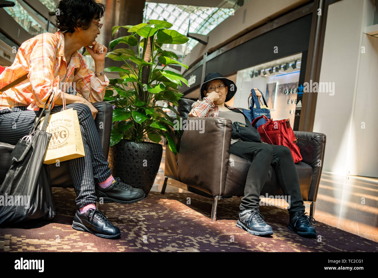 Il Marina Bay Sands shopping mall in Singapore Foto Stock