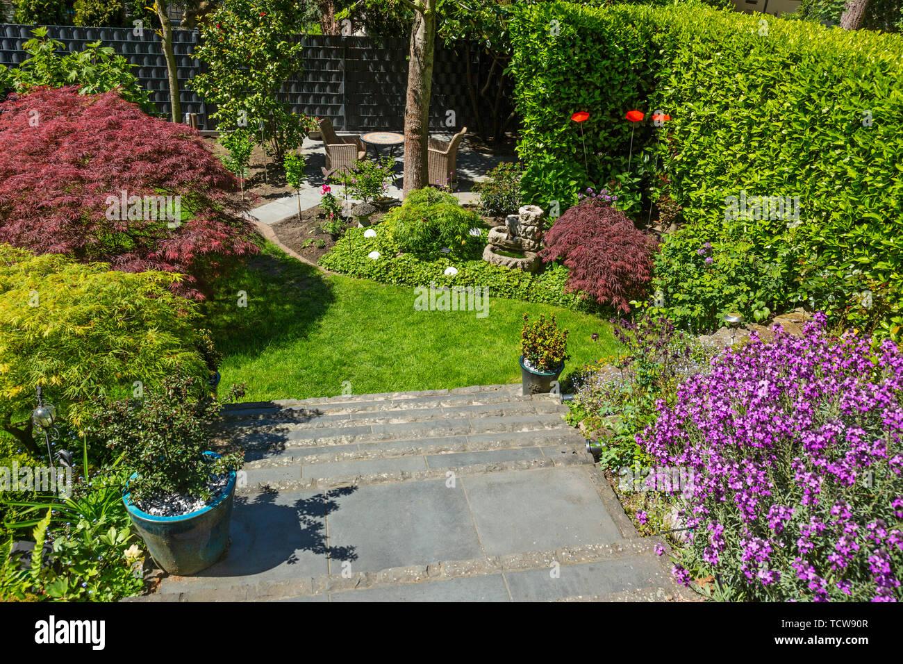 Giardino Di Una Casa giardino di una casa residenziale, giardino di fiori, fiori