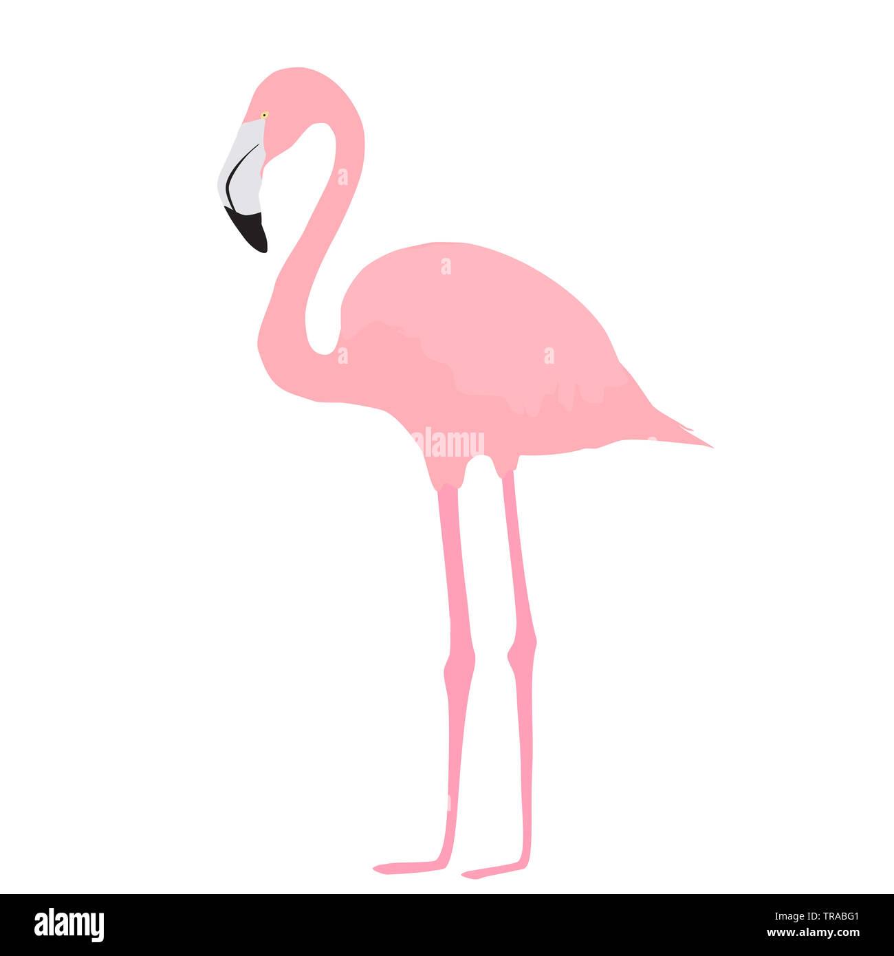 Fenicottero rosa icona isolati su sfondo bianco. Uccello tropicale carattere semplice, vista laterale. Il design del vettore per la vacanza estiva, eps 10 Immagini Stock