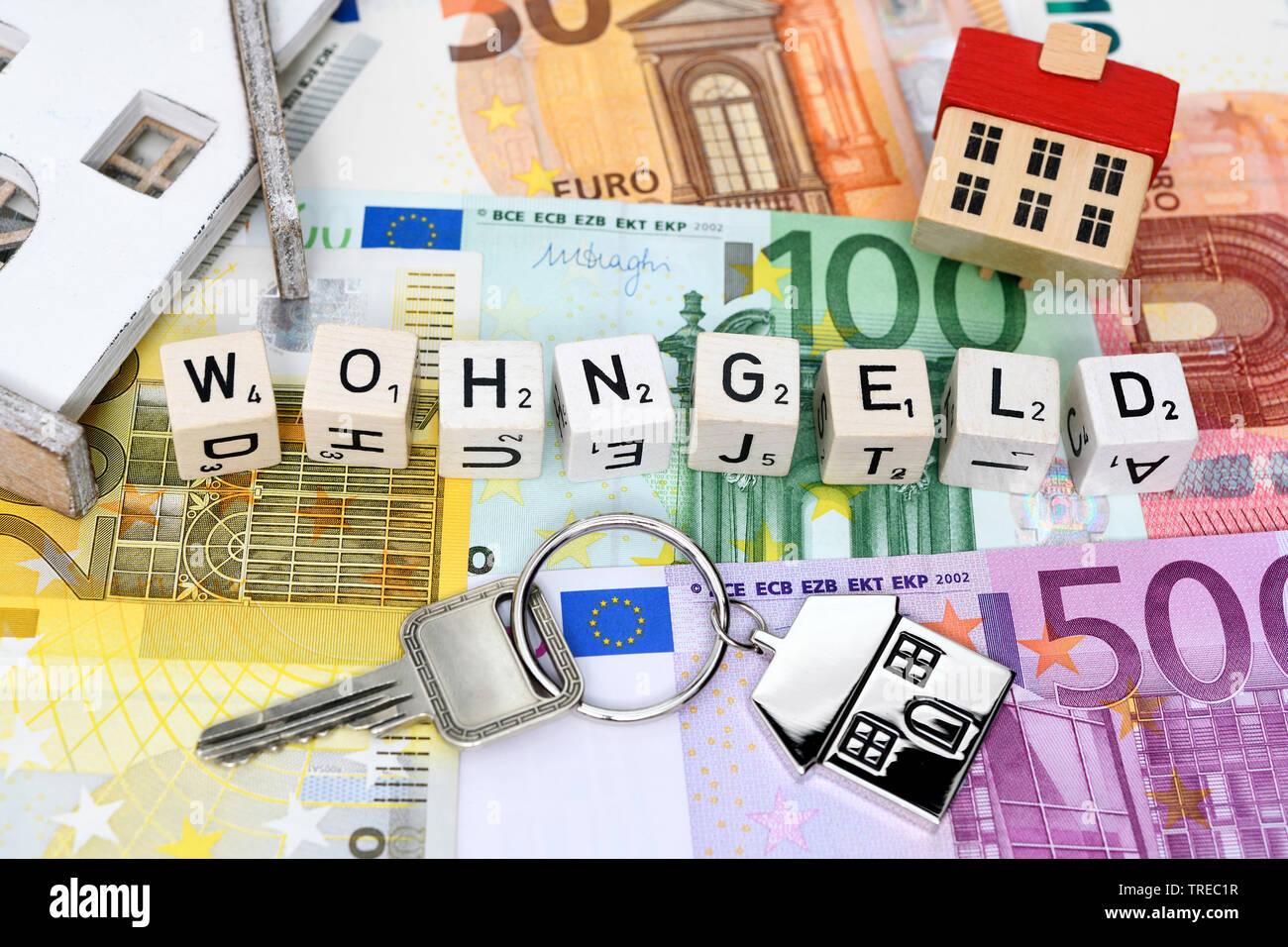 La parola WOHNGELD (alloggiamento sovvenzione) composta di carattere dadi Foto Stock