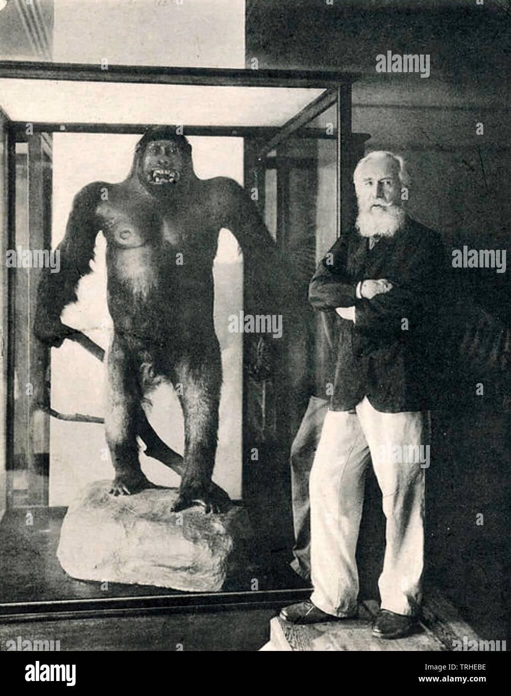 ERNST HAECKEL (1834-1919) uno zoologo tedesco e artista Immagini Stock