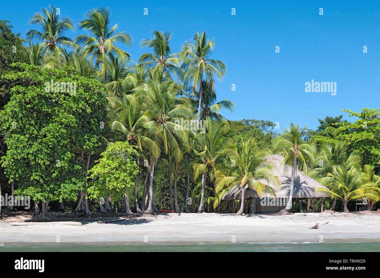 Bellissima isola tropicale paesaggio in Chiriqui, Panama. Immagini Stock