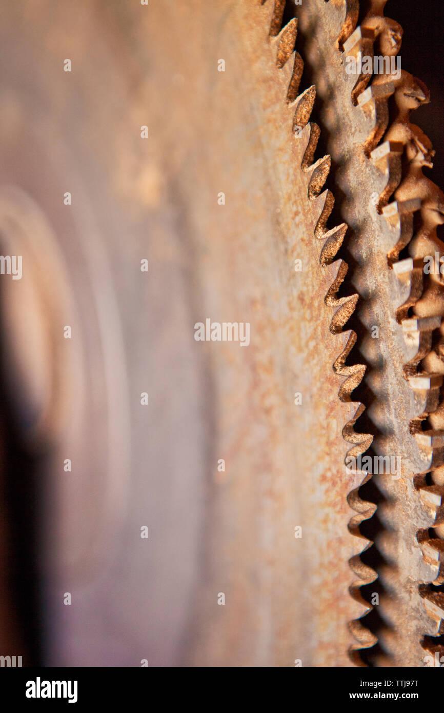 Immagine ritagliata della sega circolare Foto Stock