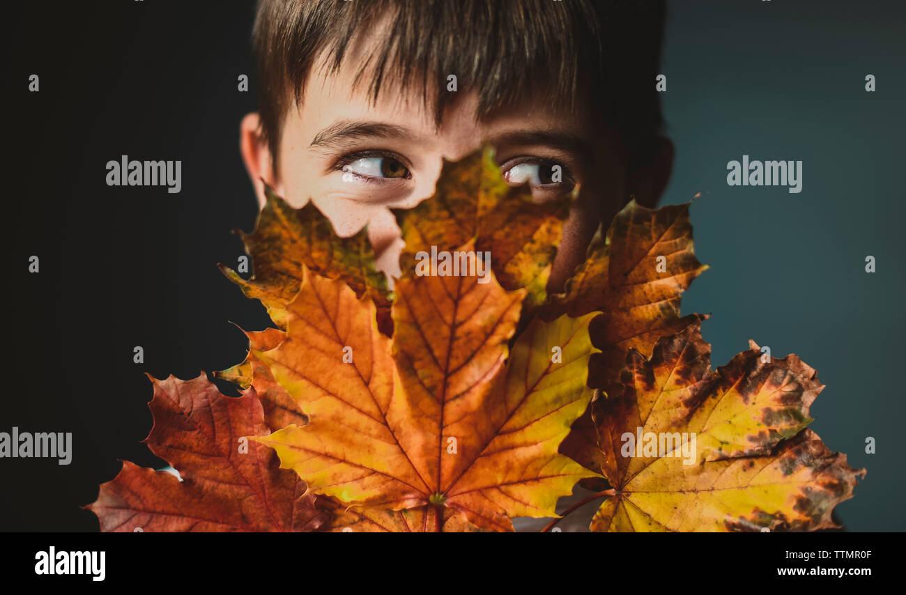 Close-up del ragazzo che guarda lontano mentre copre il viso con foglie di autunno contro sfondo colorato Foto Stock
