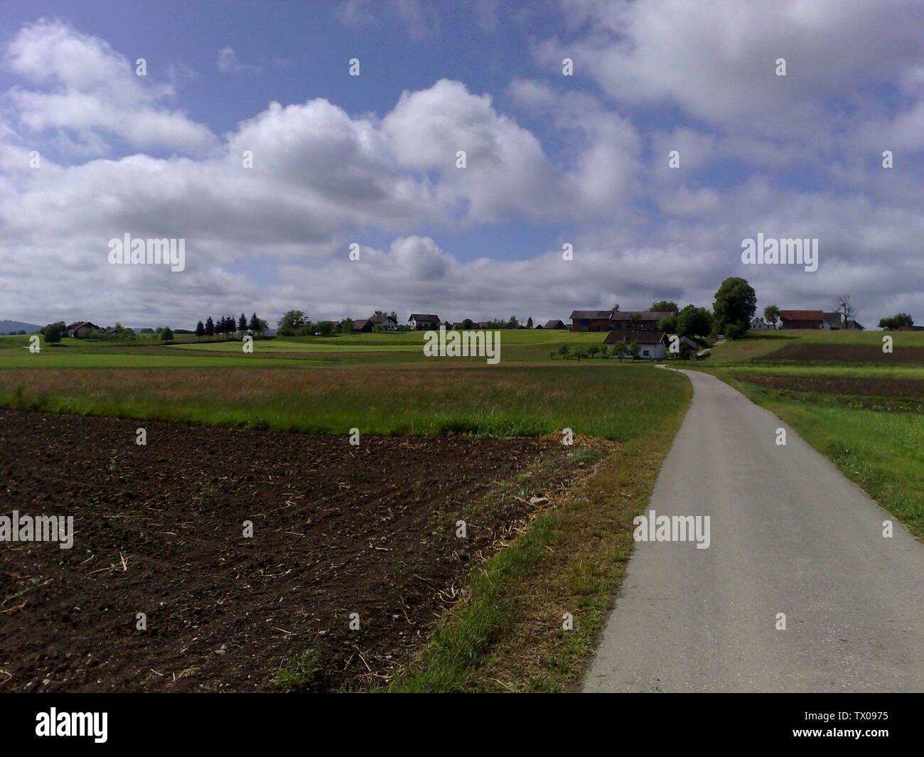 'Slovenščina: Boršt slikan iz vasi Škrilje; 6 maggio 2007; Slovenščina: lastno delo.trasferiti da sl.wikipedia; Andrej Adlesic presso la sl.wikipedia; ' Immagini Stock