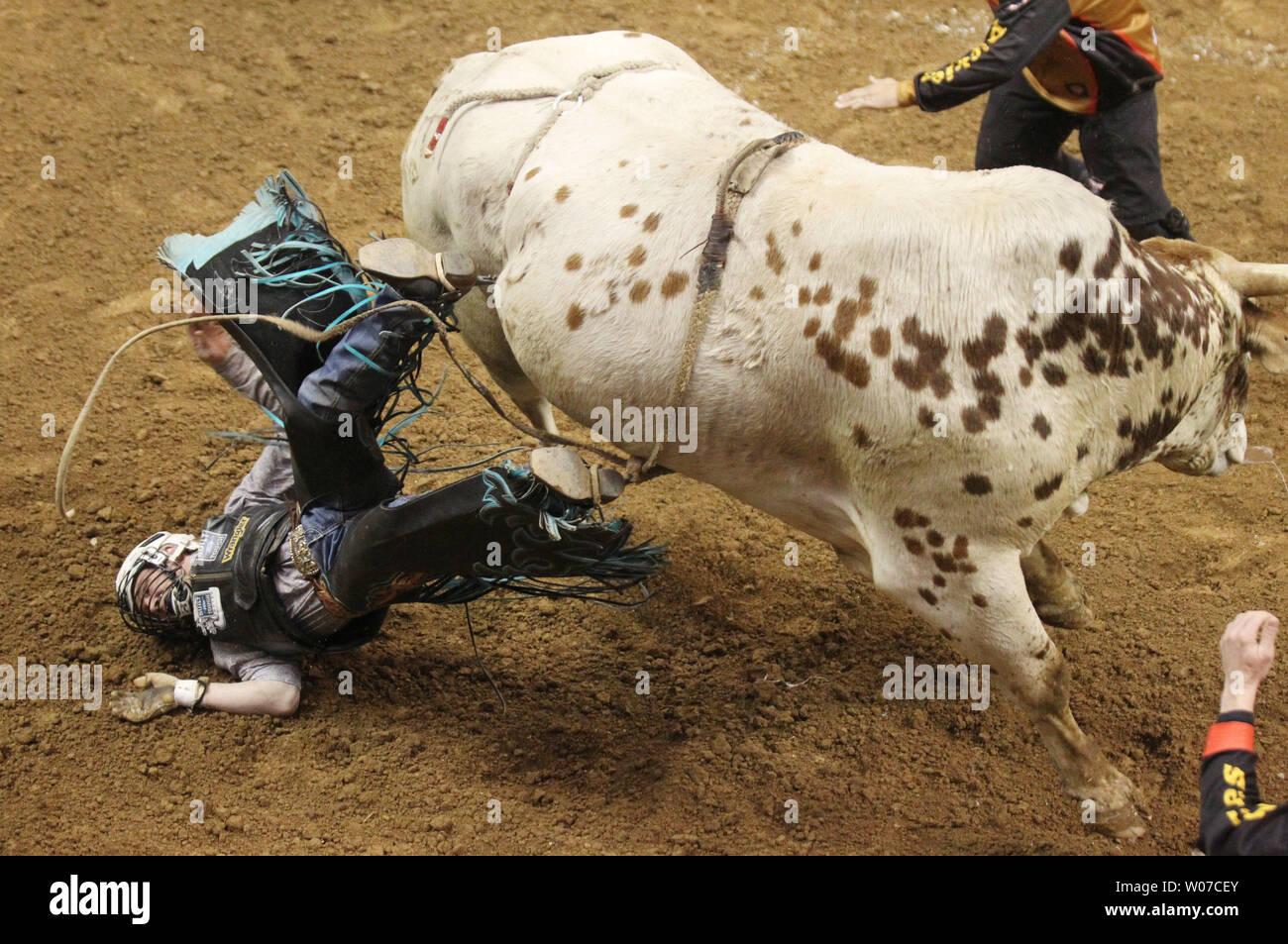 Gage Gay urta il suolo dopo la caduta Hidalgo il toro durante il terzo round della Professional Bull piloti al Scottrade Center di San Luigi il 16 febbraio 2014. UPI/Bill Greenblatt Immagini Stock