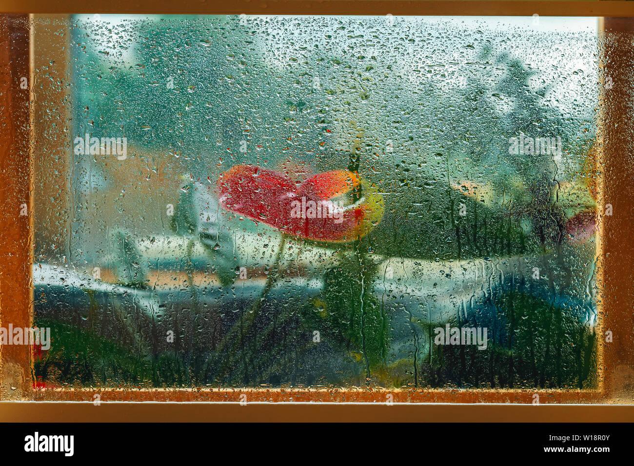 Sfocato fiori rossi in una finestra in legno telaio, wet vetro, gocce di pioggia. Immagine naturale, natura pittura, impressionismo. Concetto di tempo piovoso Immagini Stock