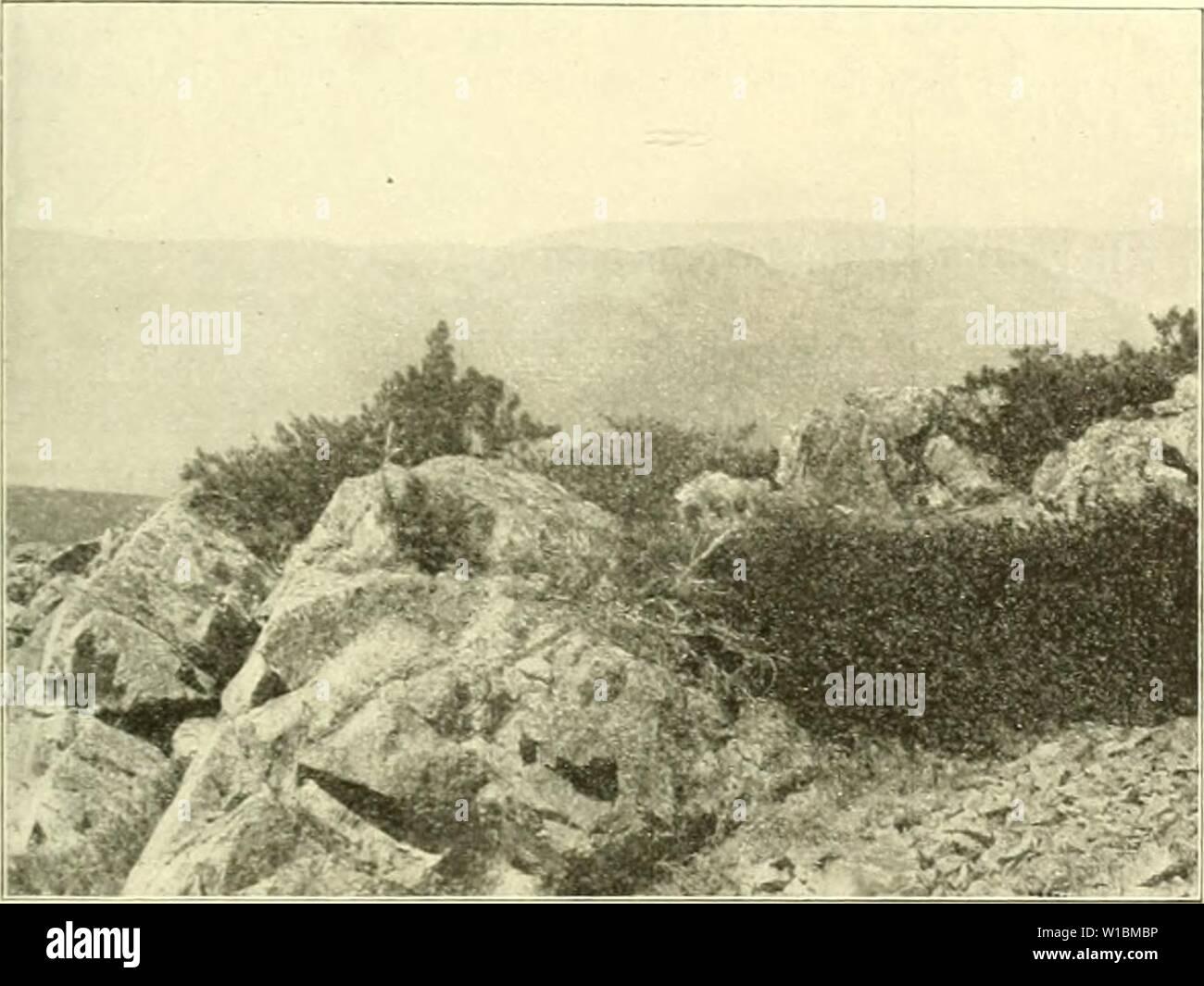 Immagine di archivio da pagina 428 di morire Arve in der Schweiz Foto Stock