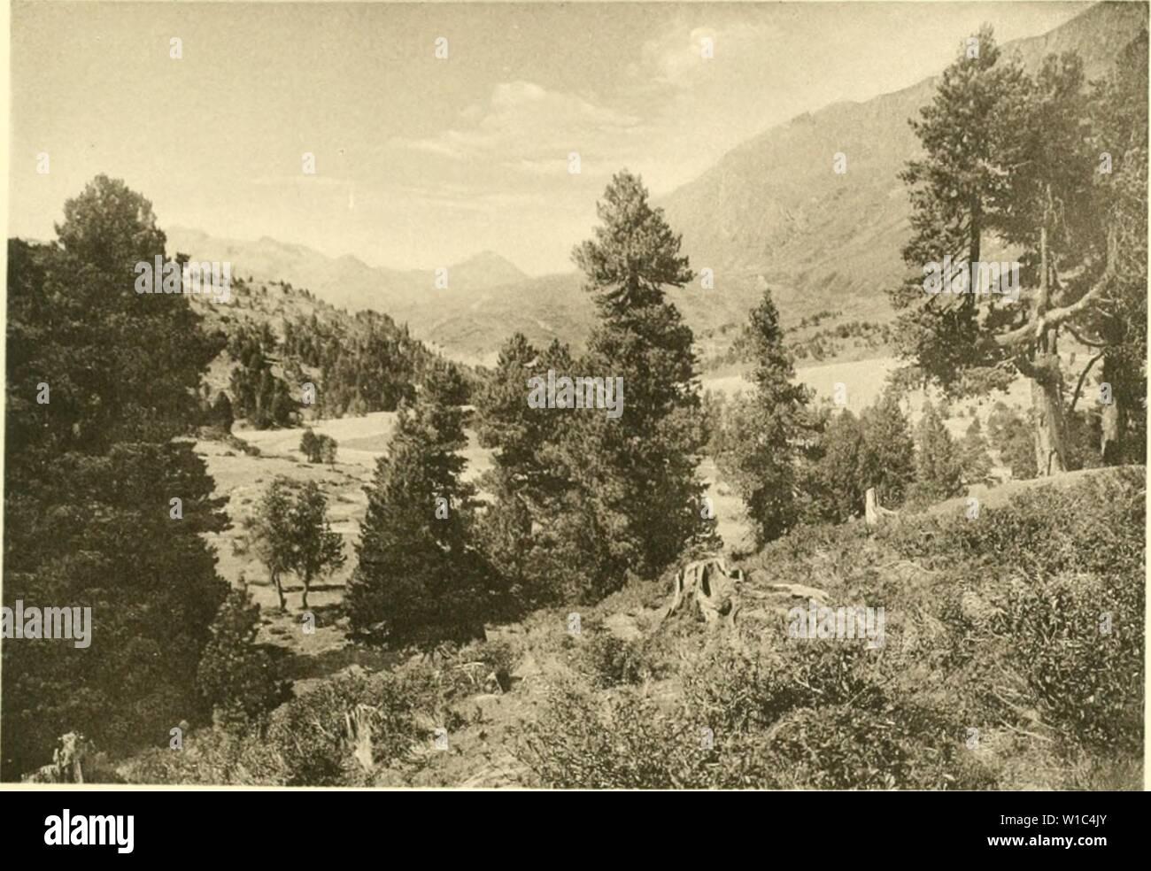 Immagine di archivio da pagina 522 di morire Arve in der Schweiz Foto Stock