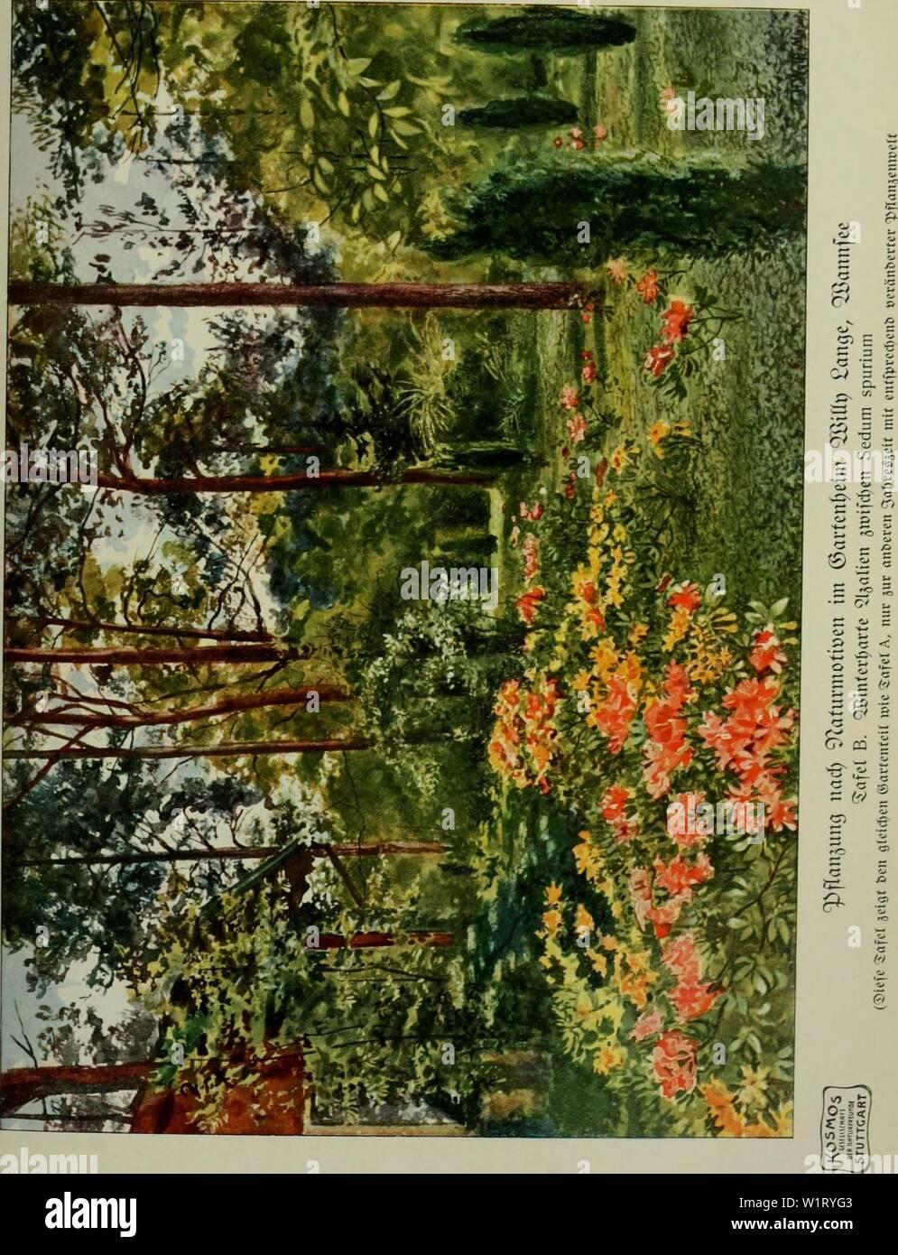 Immagine di archivio da pagina 84 di Das Leben der Pflanze (1906). Das Leben der Pflanze daslebenderpflan07fran Anno: 1906 Foto Stock
