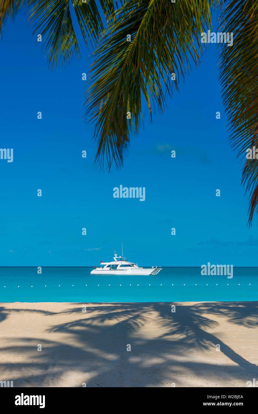 Antigua, Jolly Bay Beach, Palme gettando ombre Immagini Stock