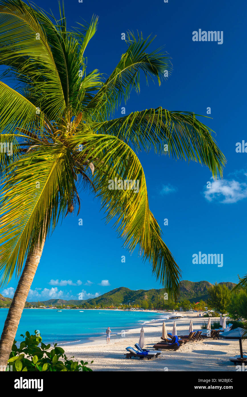 Antigua, Jolly Bay Beach Immagini Stock