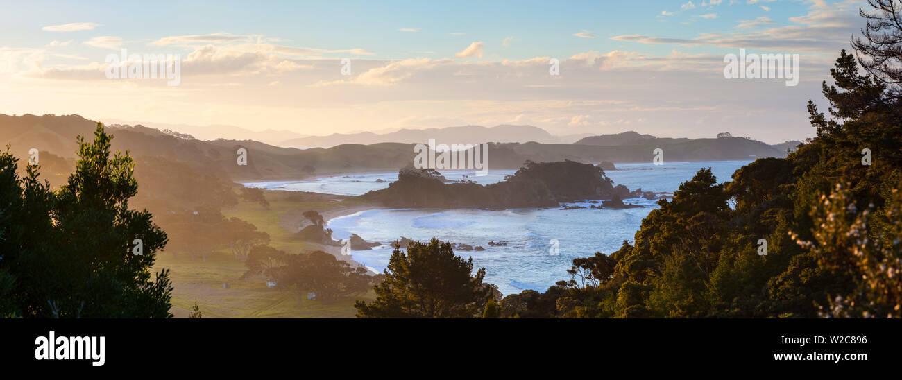 Northland Costa, Whananaki, Nortland, Isola del nord, Nuova Zelanda, Australasia Immagini Stock