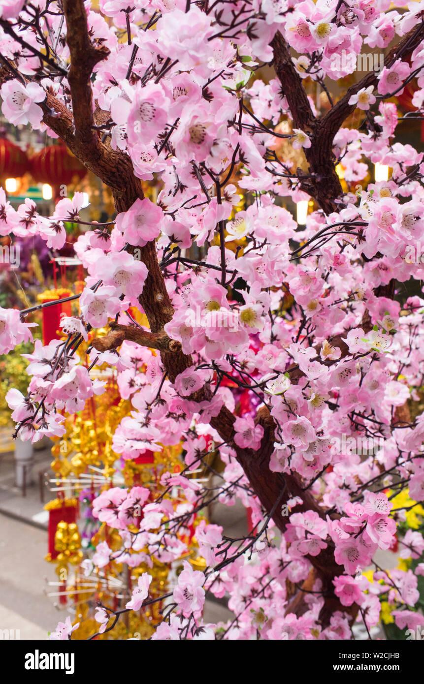 Il Vietnam, Hanoi, Tet capodanno nuovo anno lunare, fiori di ciliegio in vendita Immagini Stock