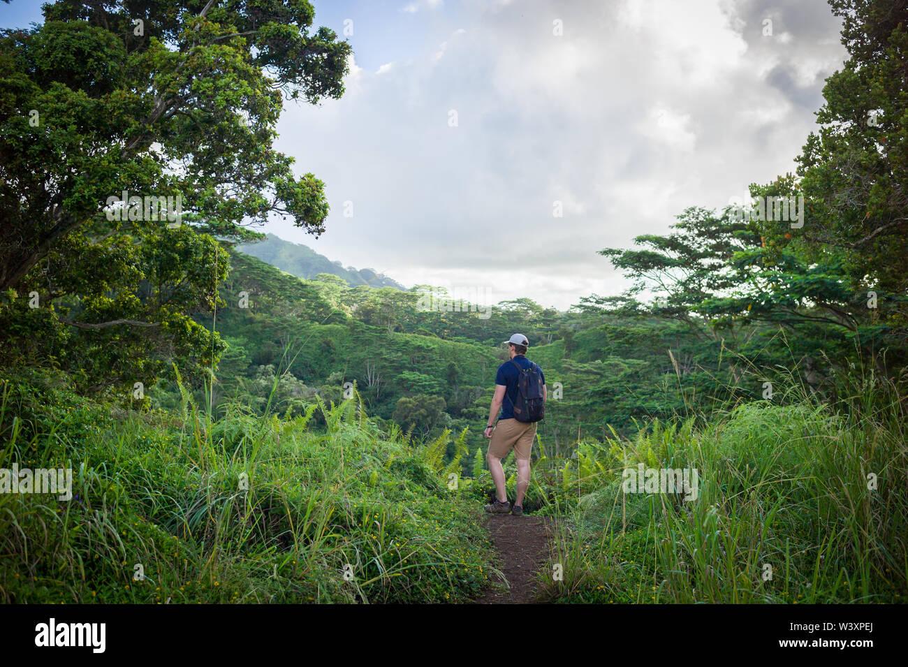 La Cresta Kuilau Trail offre agli escursionisti accesso alle foreste lussureggianti e splendide vedute delle montagne Makaleha e il Monte Waialeale. Foto Stock