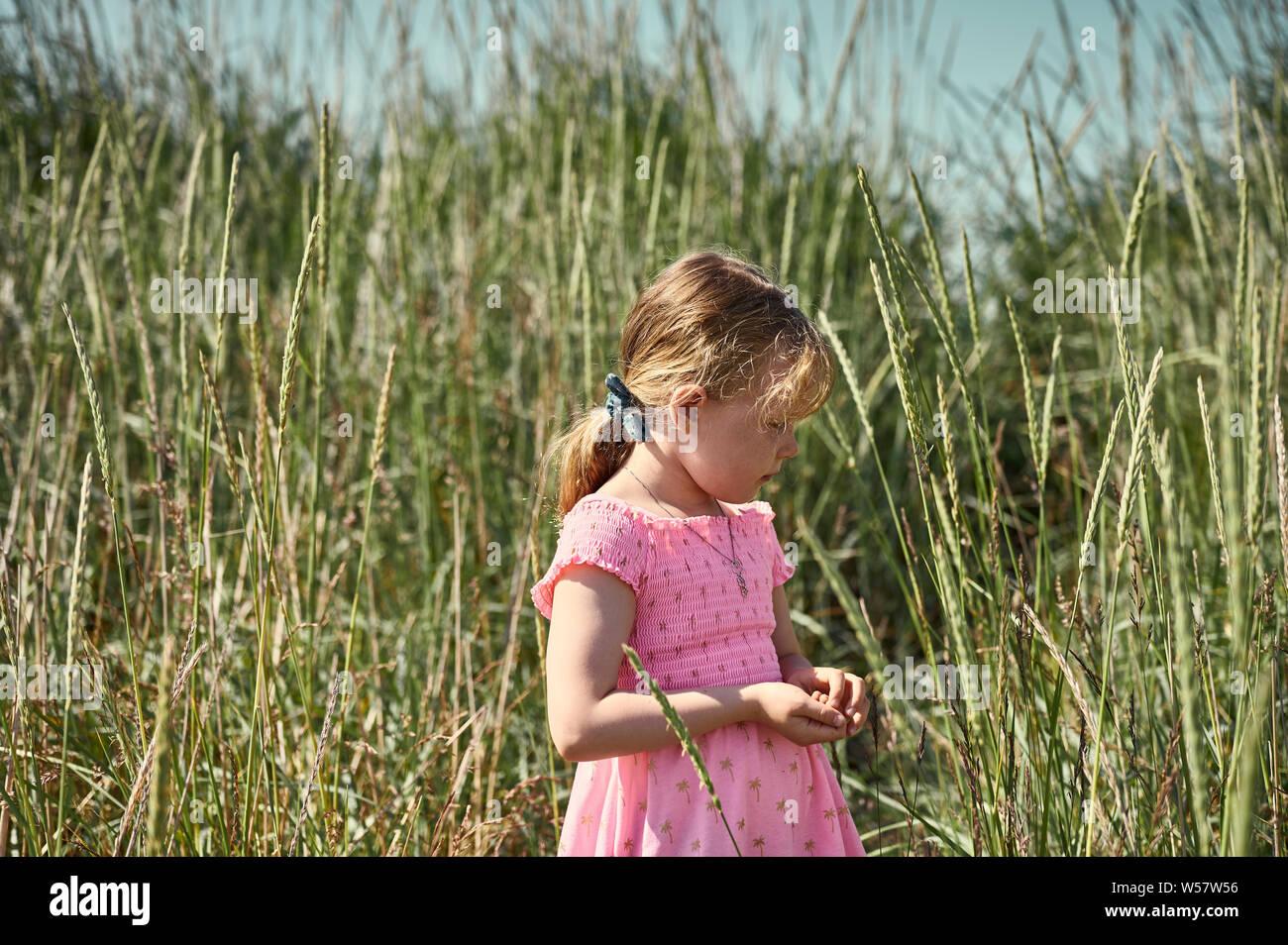 Considerato giovane ragazza in abito rosa piedi tra erba alta nel verde lussureggiante campo sulla grotta isola di apprendimento e natura selvaggia Foto Stock