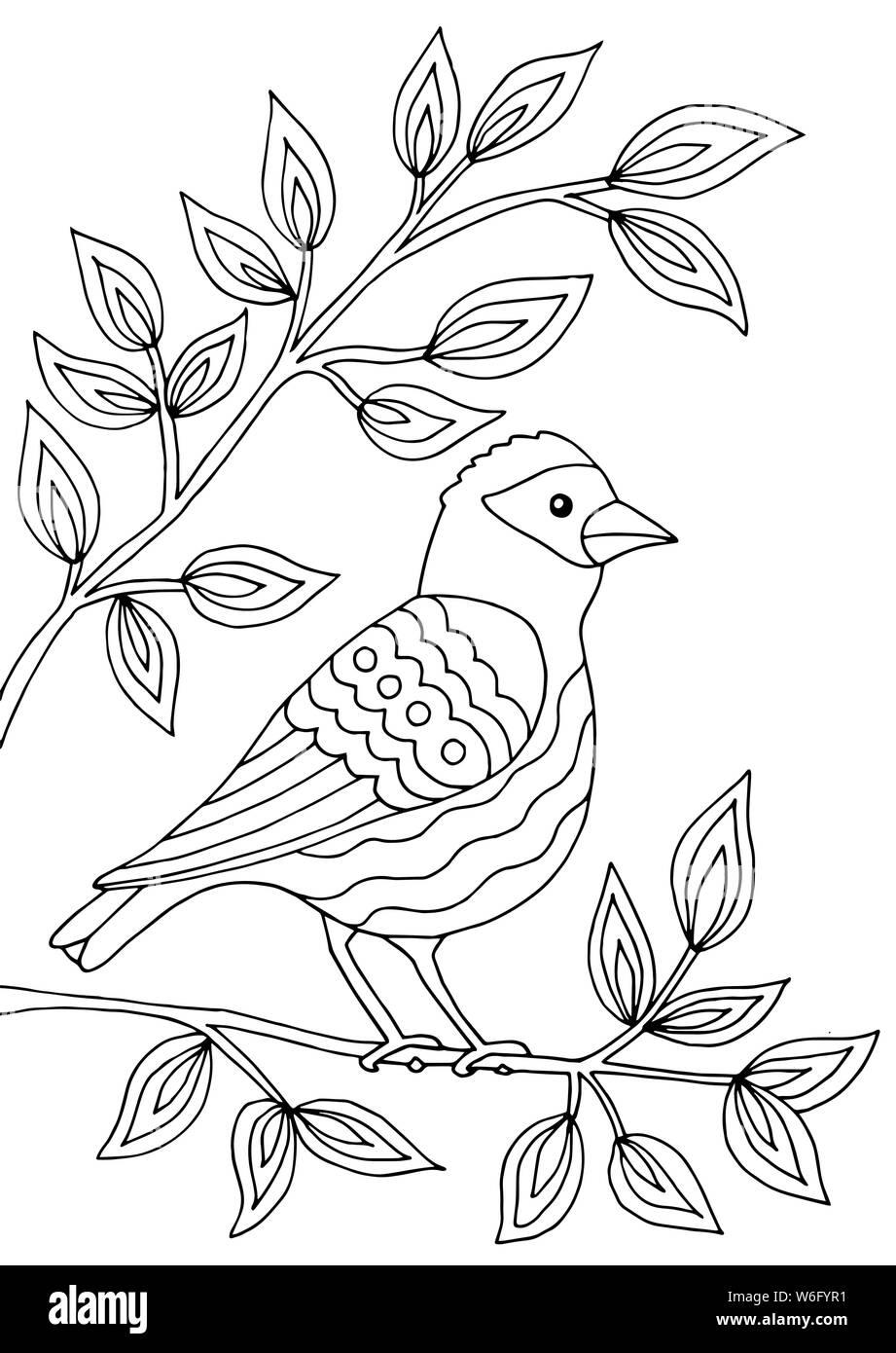 Bird Seduto Su Un Ramo Di Un Albero Di Fioritura Pagina Da Colorare Per Bambini E Adulti Immagine E Vettoriale Alamy