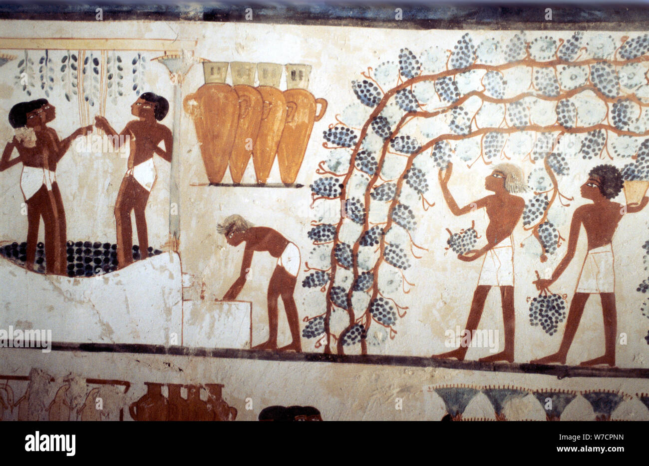 Egyptian Tomb Wall Painting From Immagini E Fotos Stock Alamy