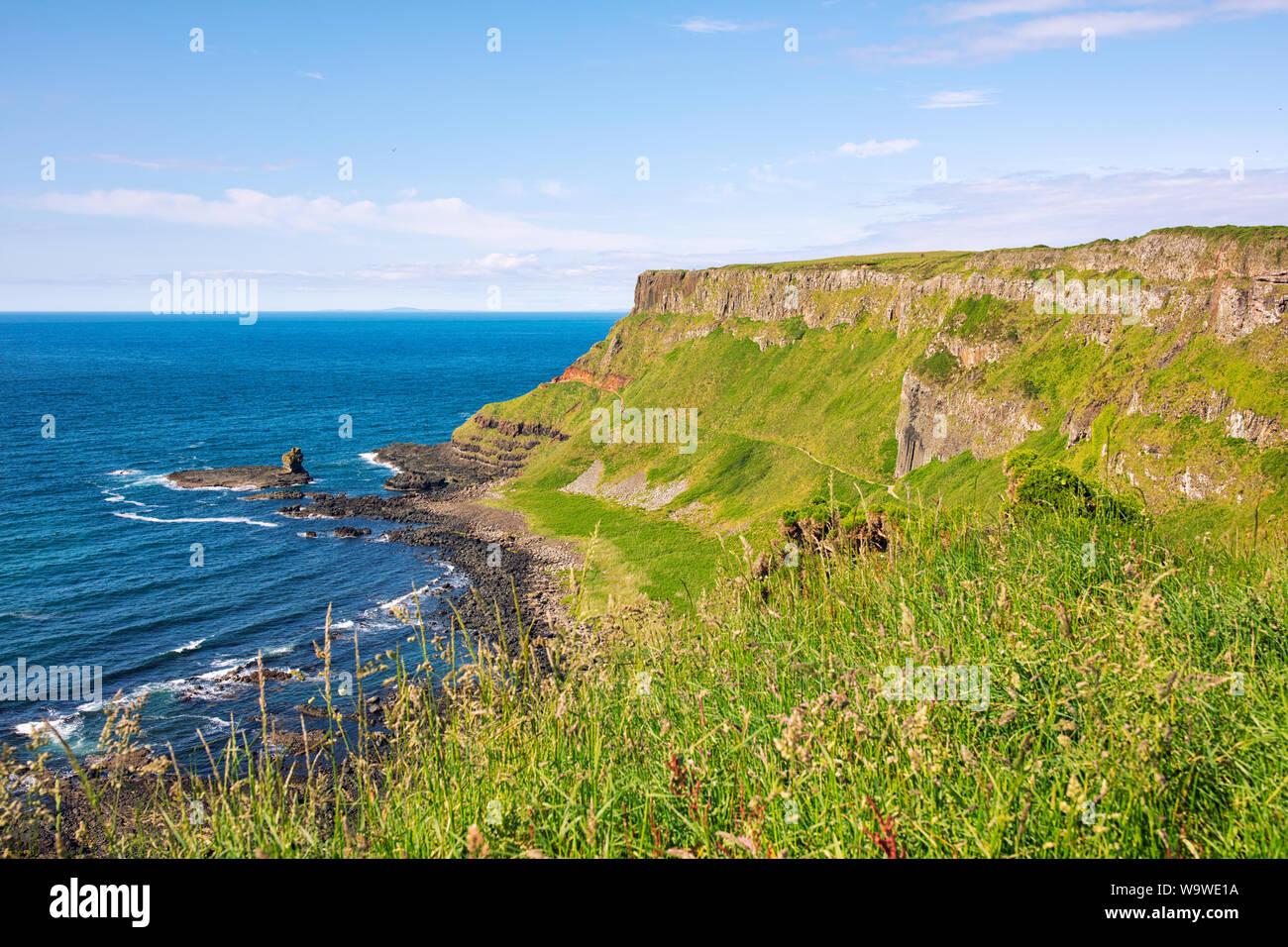 Estate giants causeway litorale,l'Irlanda del Nord Foto Stock