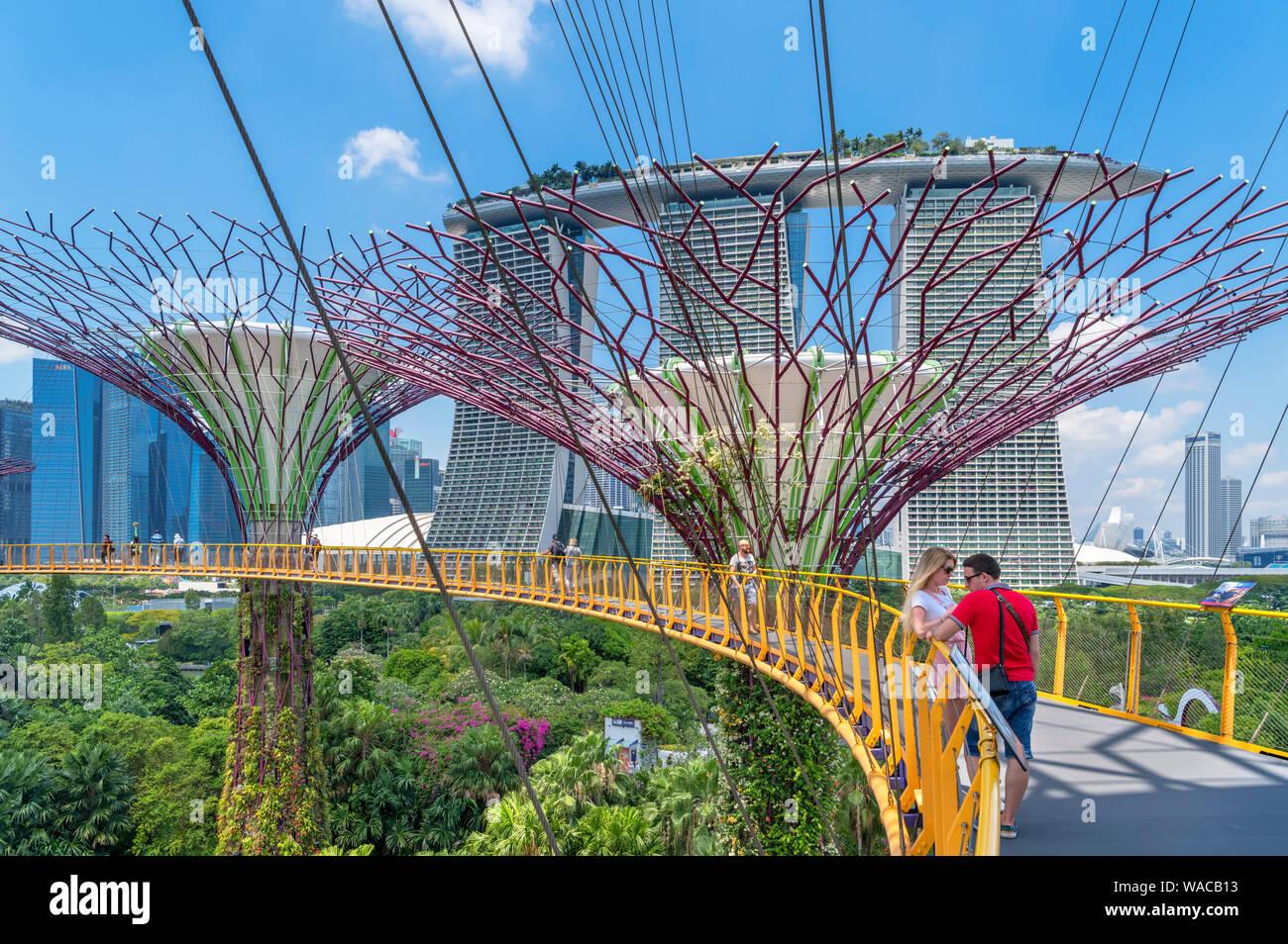 La OCBC Skyway, una passerella aerea nel Supertree Grove, guardando verso la Marina Bay Sands, giardini dalla baia, città di Singapore, Singapore Foto Stock