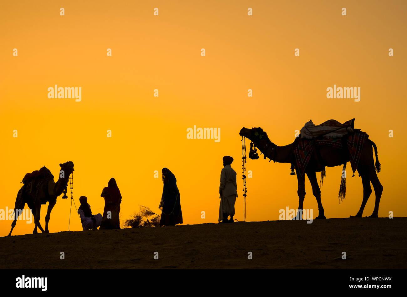 Jaisalmer, Rajasthan, India - aprile 18th, 2018: cameleers indiano (camel driver) con i cammelli sagome in dune del deserto di Thar sul tramonto. Foto Stock