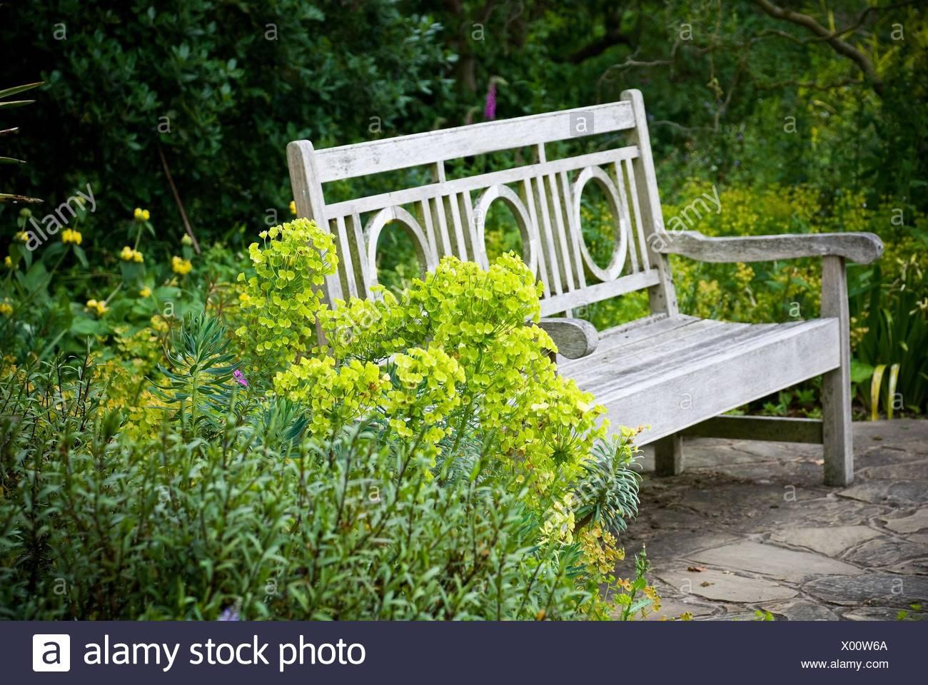 Il giardino segreto. giardino inglese banco foto & immagine stock