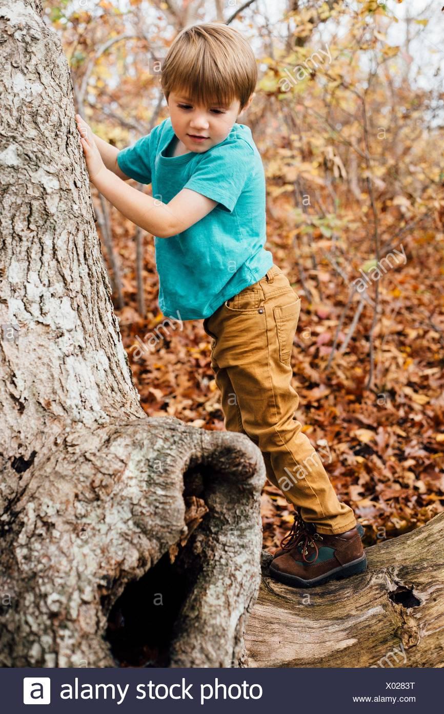 Giovane ragazzo in foresta, rampicante Foto Stock