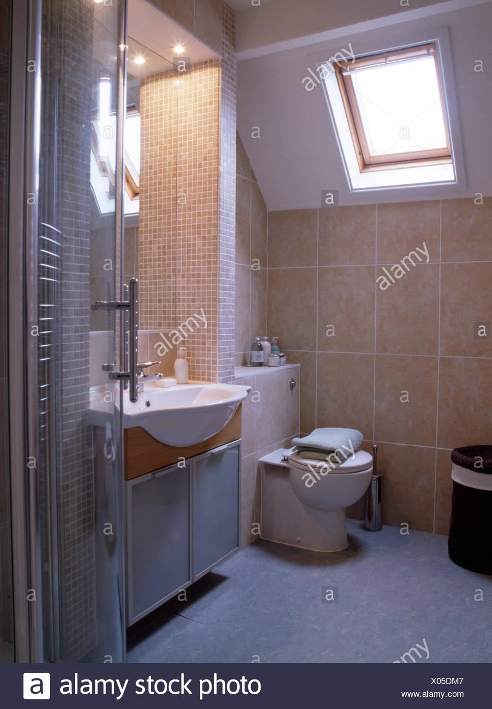 Piastrelle Piccole Per Bagno.Finestra Velux Sopra Wc In Piccole Piastrelle Bagno Soffitta Foto