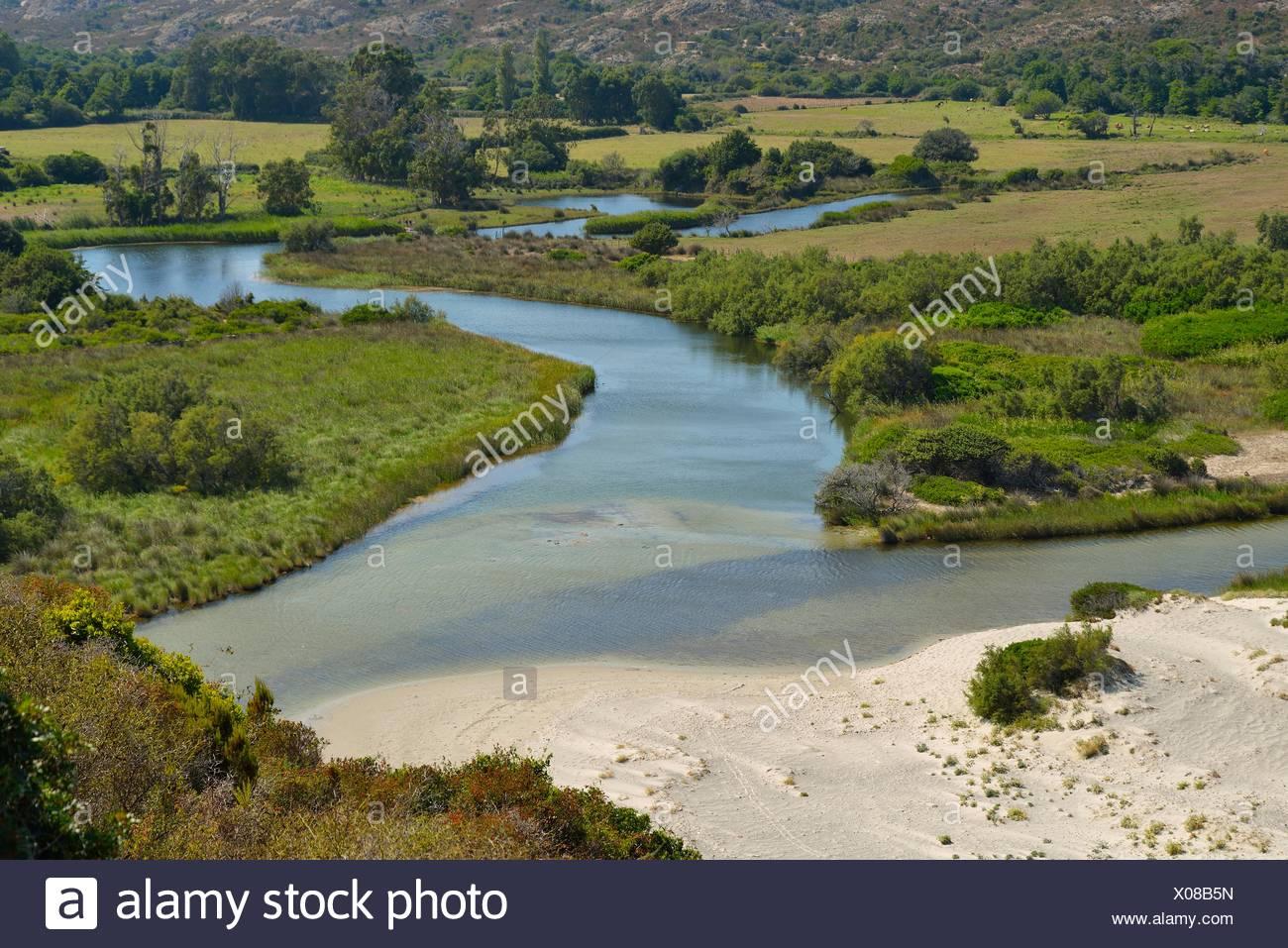 Foce del fiume Ostriconi in Calvi, Corse-du-Sud, Corsica, Francia Immagini Stock