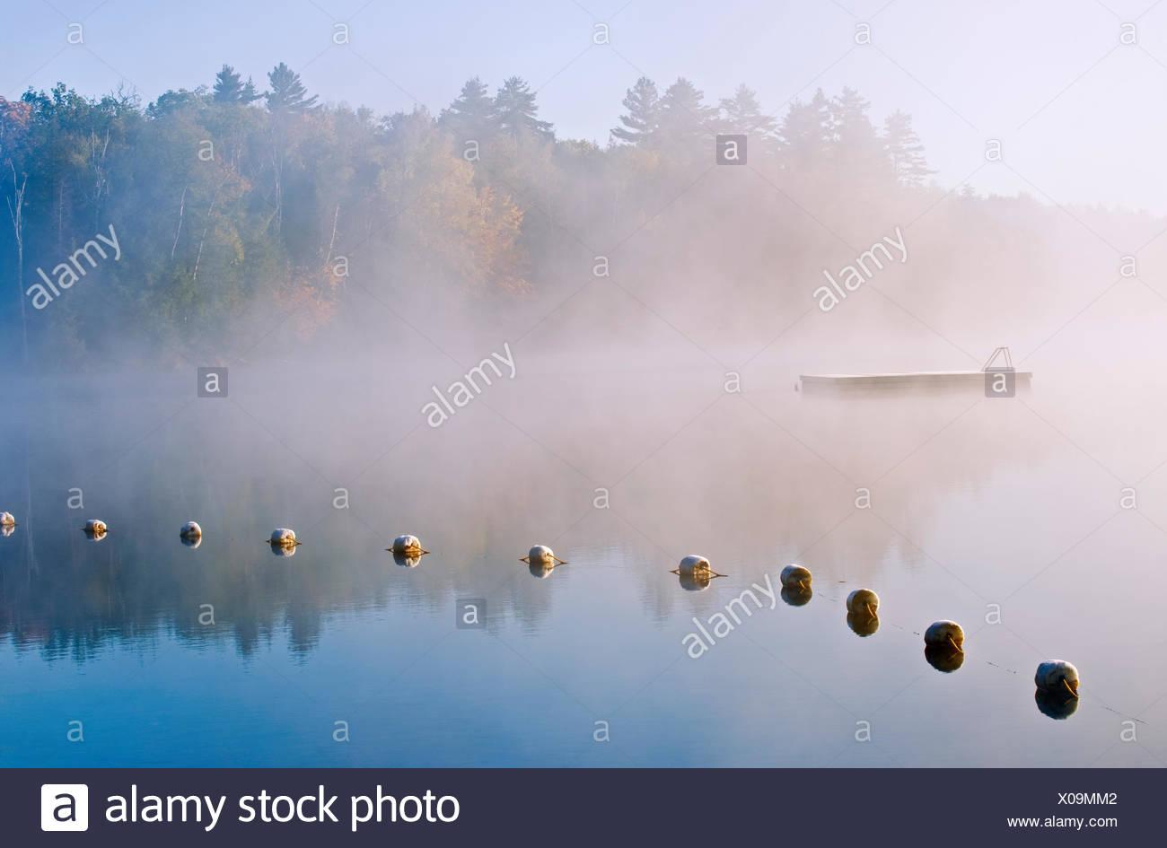Boe su silenzioso Lago Lago silenzioso parco provinciale Ontario Canada Immagini Stock