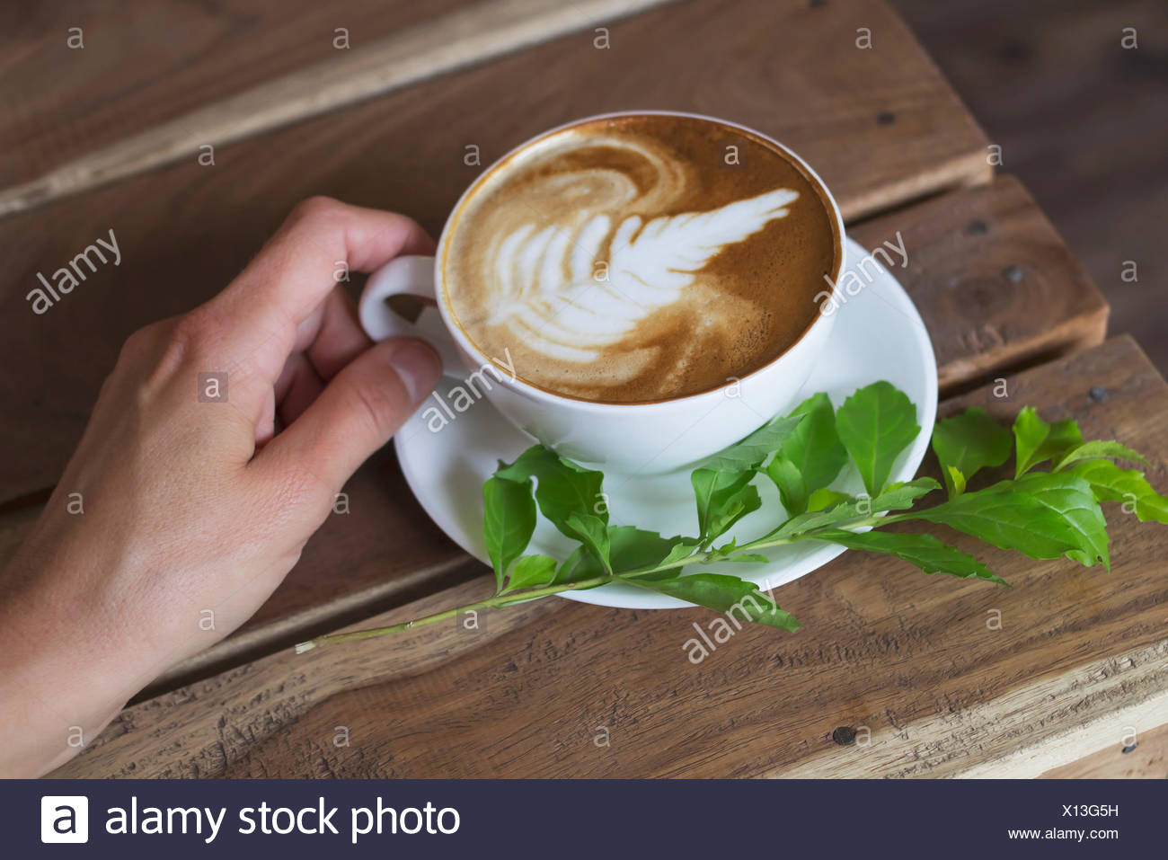 Una donna azienda tazza di cappuccino Immagini Stock