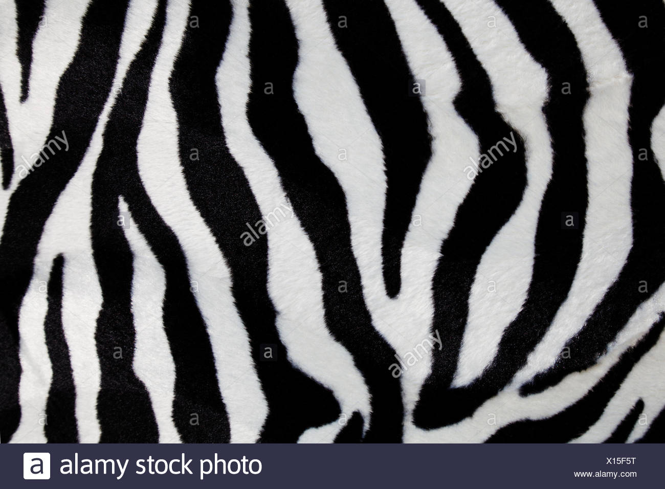 Stampa Zebra per lo sfondo Foto   Immagine Stock  276102228 - Alamy f481ae8b2bd7