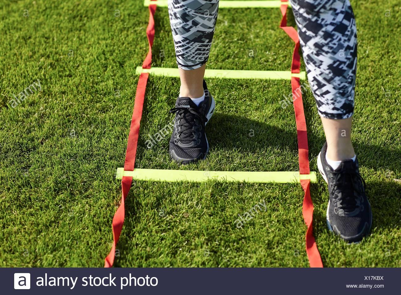 Piedi di giovane donna formazione sulla scaletta di agilità Immagini Stock