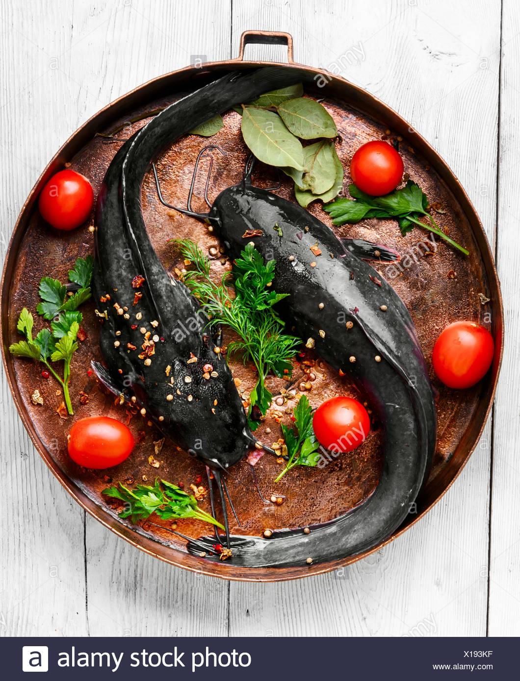 Pesce Crudo Pesce Gatto Su Rame Padella Foto Immagine Stock