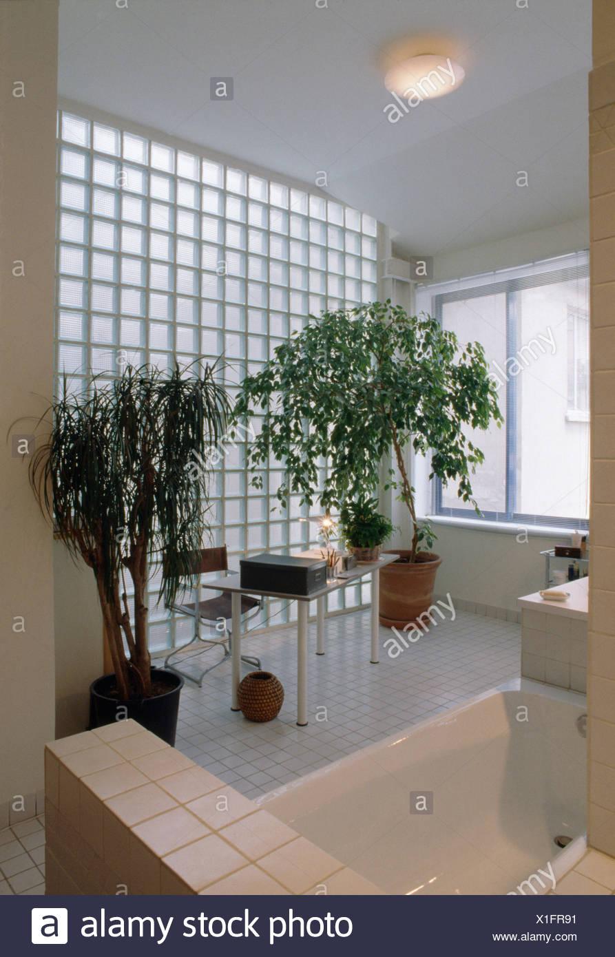 Houseplants e vetro muro in mattoni di colore bianco e moderno bagno con vasca da bagno - Bagno di colore prezzo ...