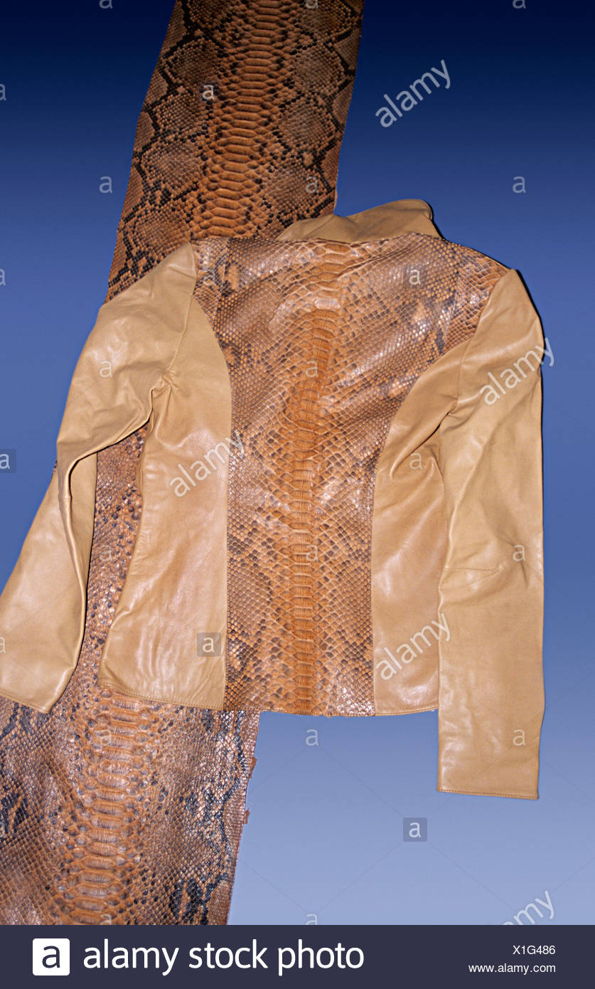 Snake Jacket Immagini   Snake Jacket Fotos Stock - Alamy d5604697bb1