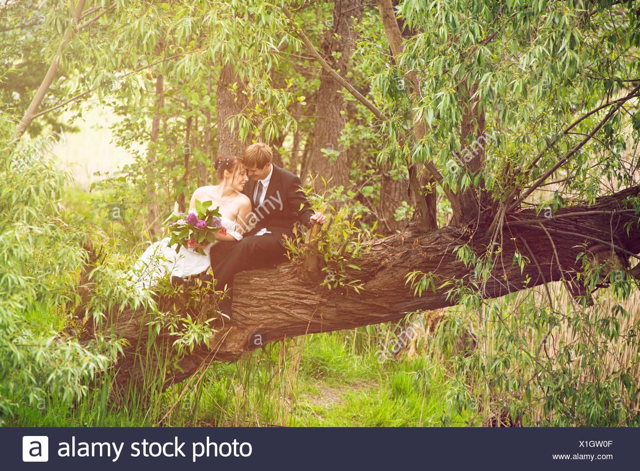 Sposa e lo sposo seduta innamorato su un albero, Foto Stock