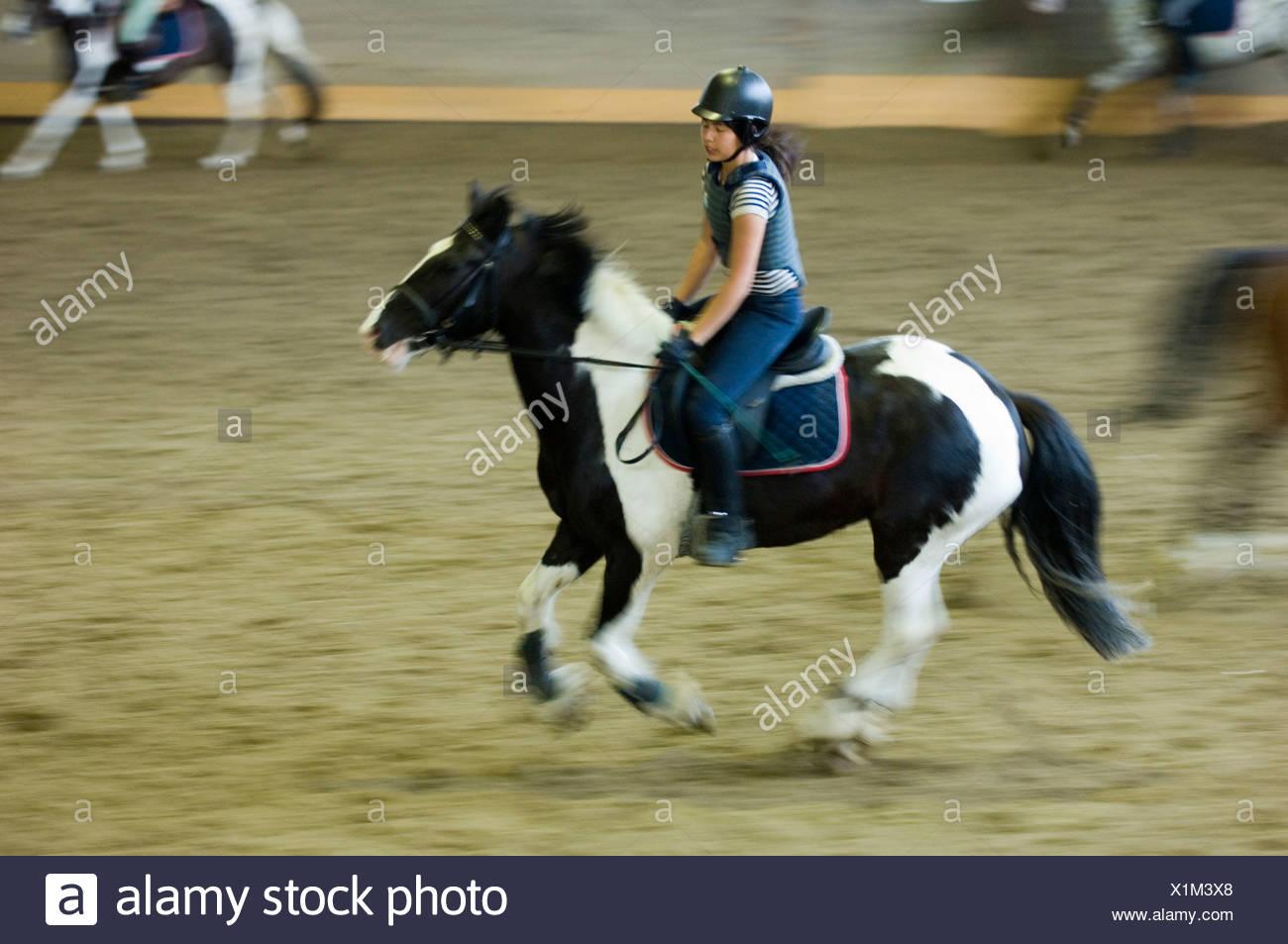 Vista laterale di una ragazza in sella ad un cavallo nella scuola di equitazione arena Immagini Stock