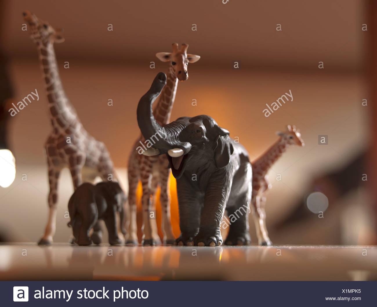 Safari modelli animali Immagini Stock