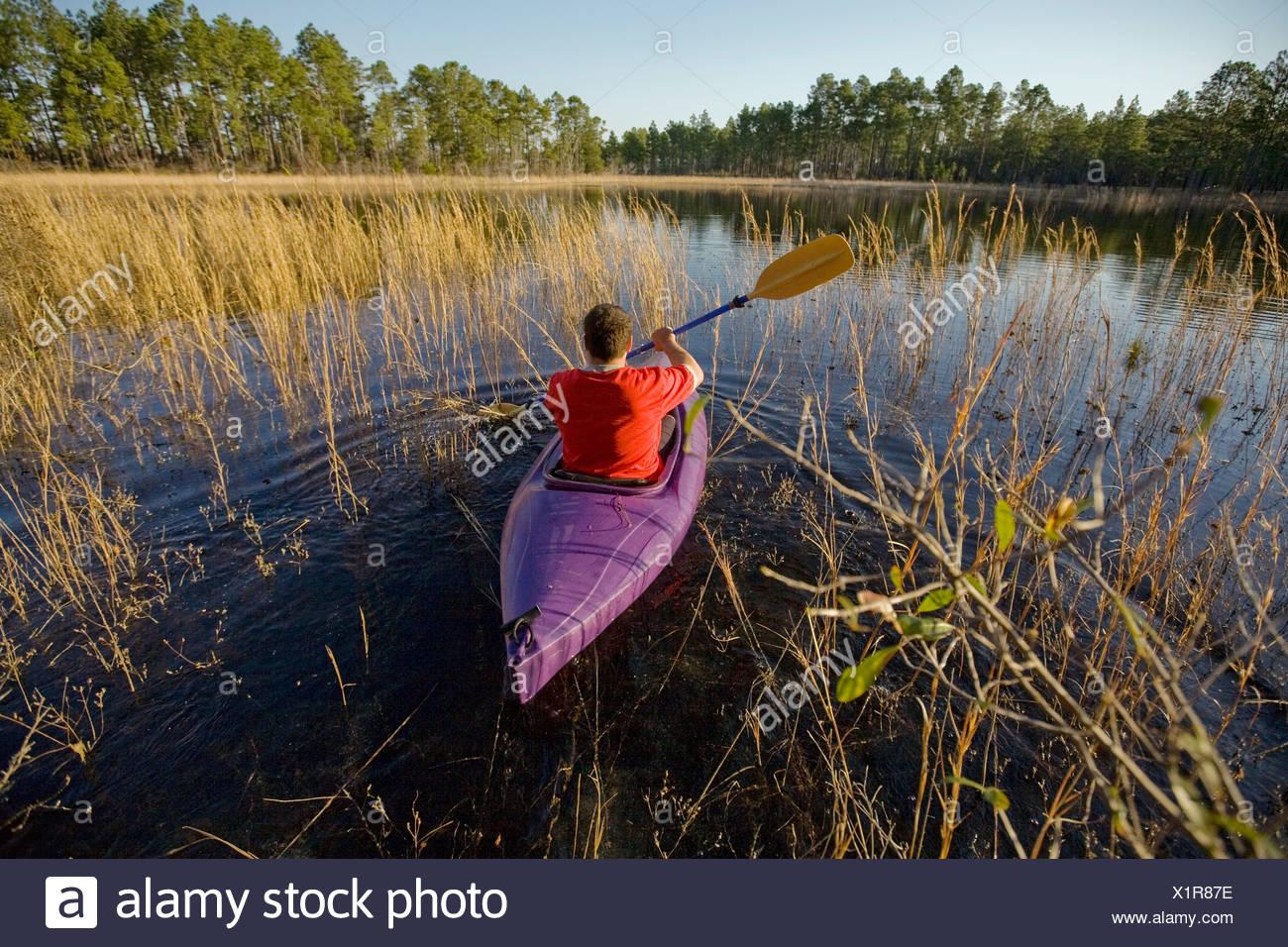 Un uomo kayak attraverso una parte della palude Verde nel Sud-est della Carolina del Nord Immagini Stock
