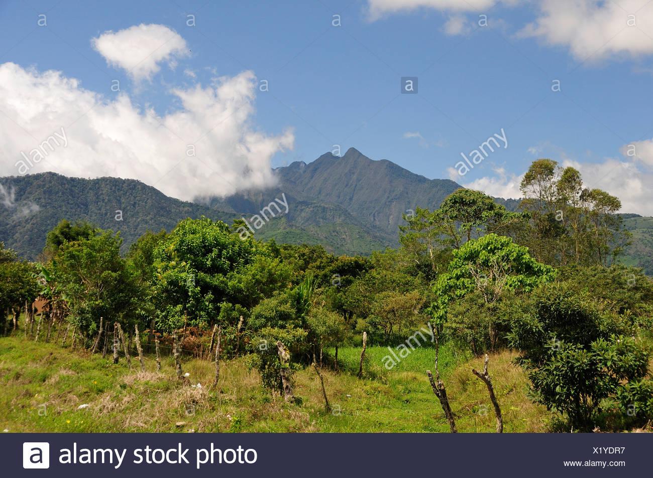 Vulcano, paesaggio, Volcan Baru, Panama, America centrale, Immagini Stock