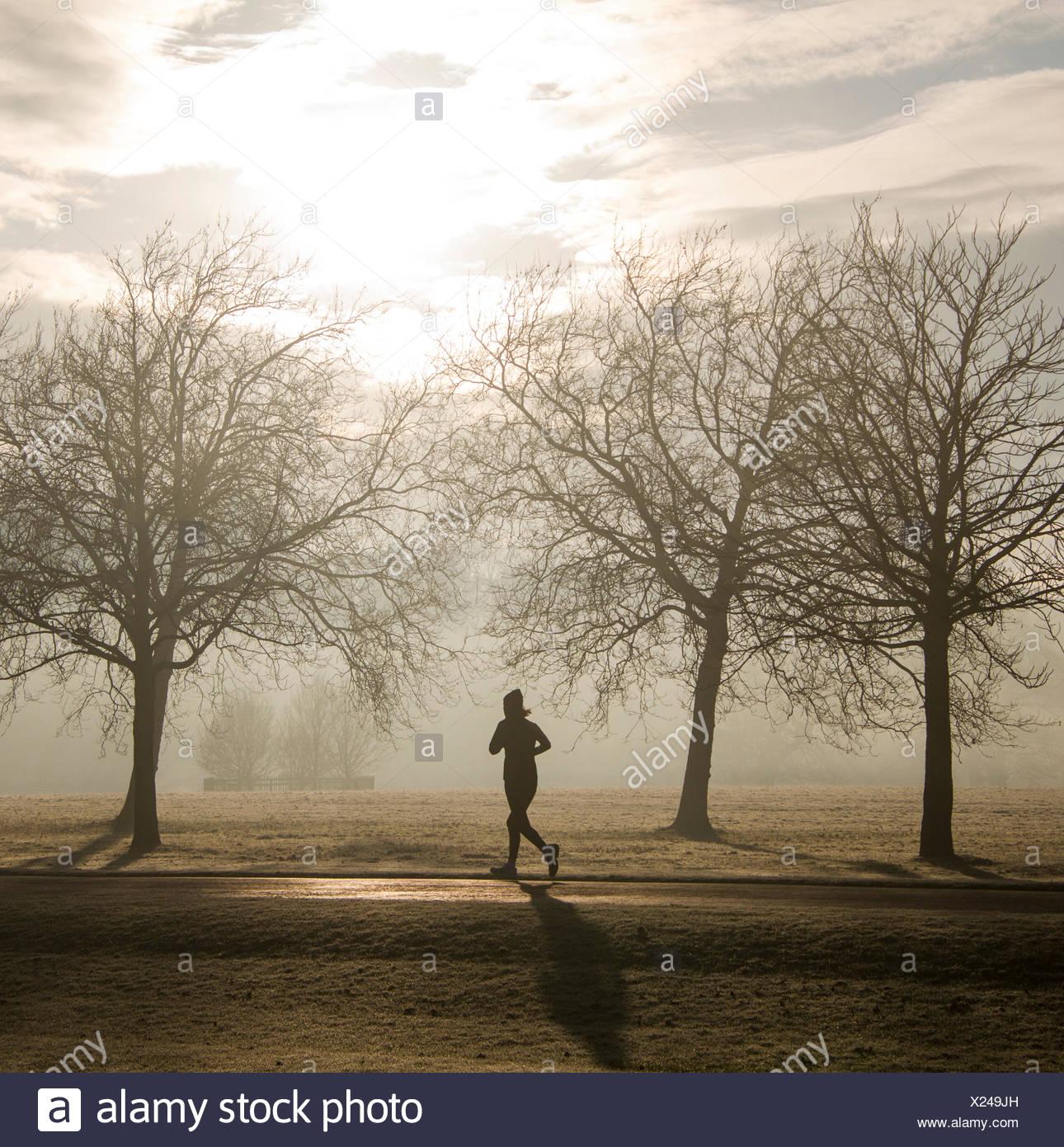 Silhouette di donna che corre attraverso il parco, England, Regno Unito Immagini Stock