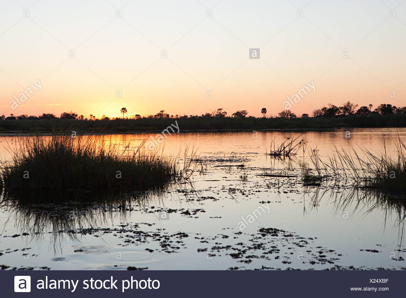 Tramonto sull'acqua nell'Okavango Delta, Botswana, Africa Immagini Stock