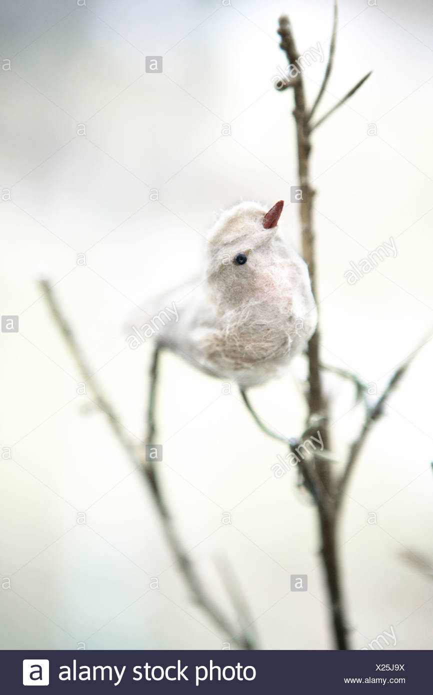 Ornamento di uccelli in Svezia. Immagini Stock