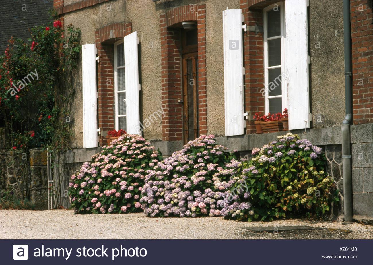 Casa Di Campagna Traduzione Francese : Foto case di campagna francesi casa di campagna francese con