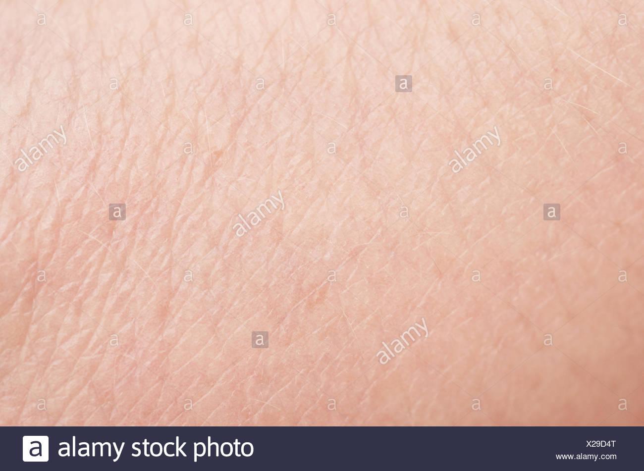 pelle umana Immagini Stock