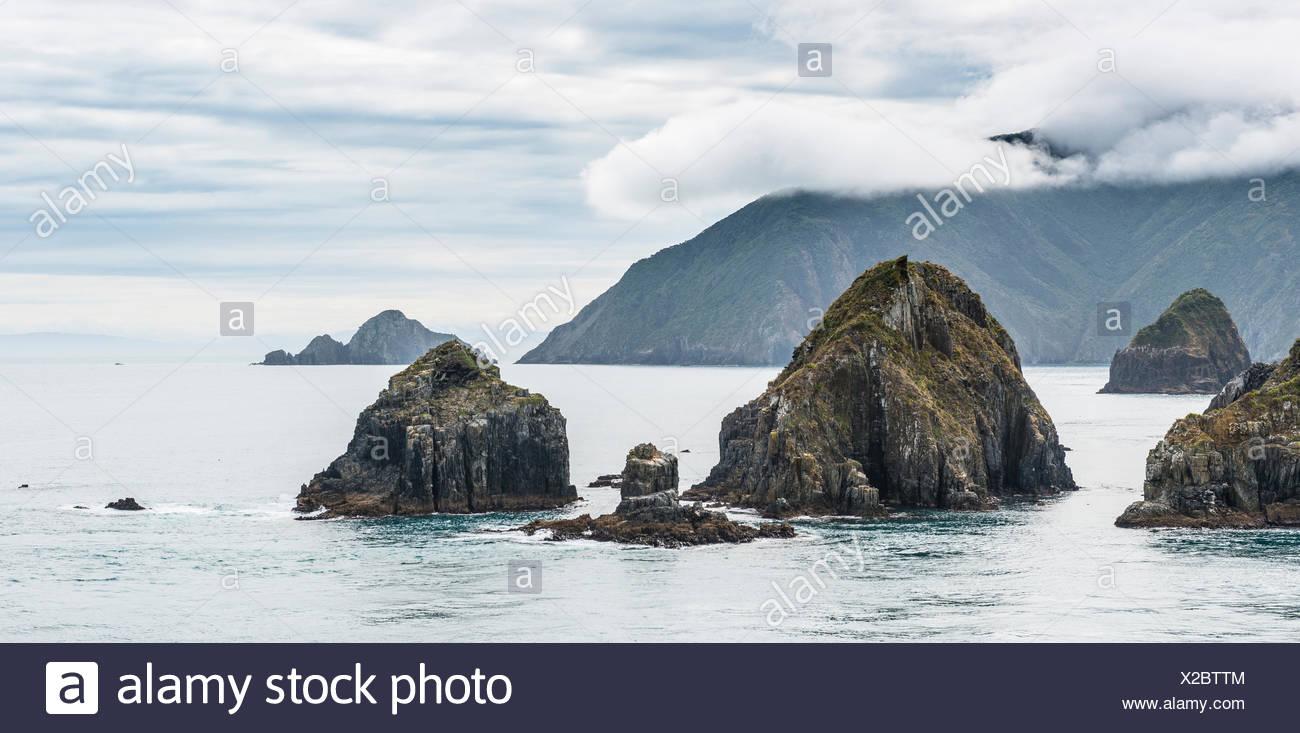 Costa sul mare, cielo nuvoloso, Queen Charlotte Sound, Totaranui, Picton, Southland, Nuova Zelanda Immagini Stock