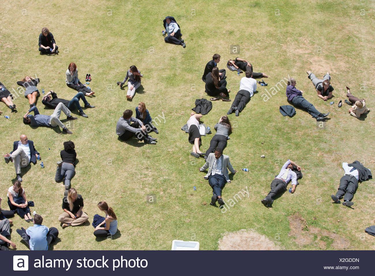 La gente di affari rilassante nella soleggiata campo Immagini Stock