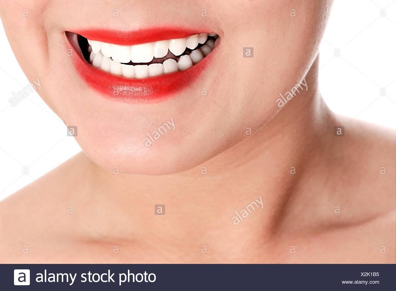 Charmant Anatomie Des Mundes Und Des Zahnfleischs Zeitgenössisch ...